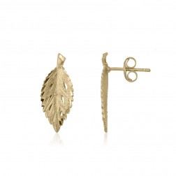 10K Yellow Gold Leaf Stud Earrings