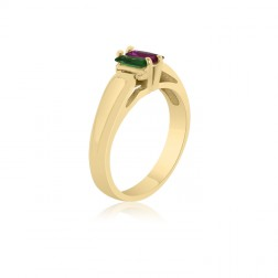 10K Yellow Gold Rectangle Stone Ring –  2 Birthstone Family Ring